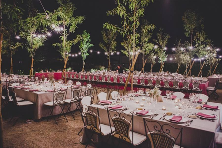 EDISEE_La-boda-con-Diana-Feldhaus_Wedding-Planner-Madrid_Las-Tenadas (28)